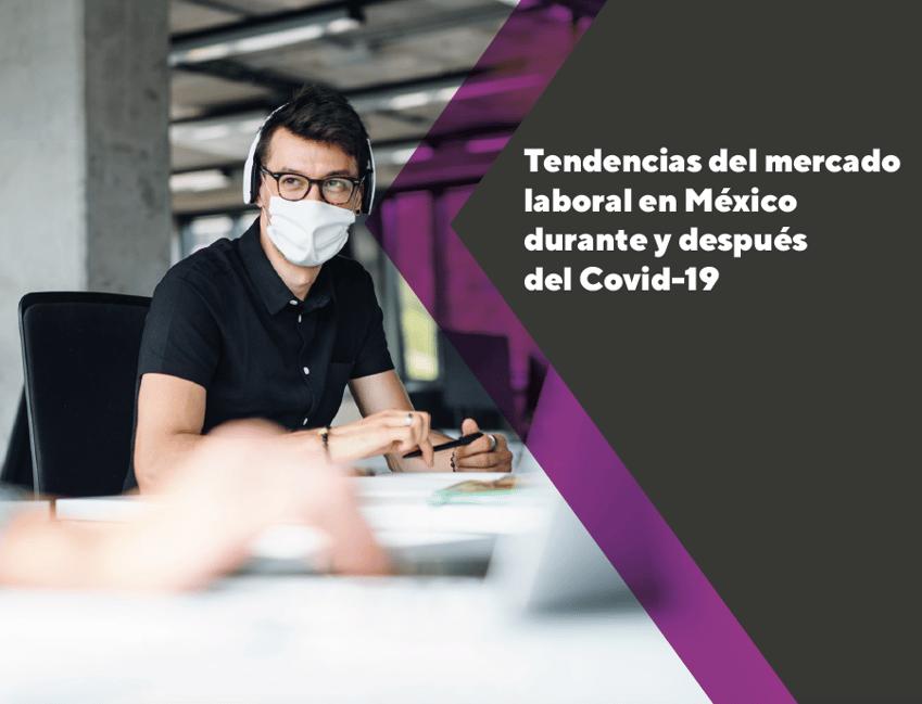 TELM Tendencias del mercado laboral en México